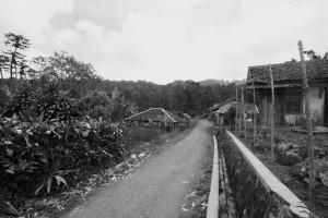 PADAKATI. Dari sini tawanan republik digiring menuju Puncak Bungah, suatu kawasan hutan di Takokak (foto:hendijo)