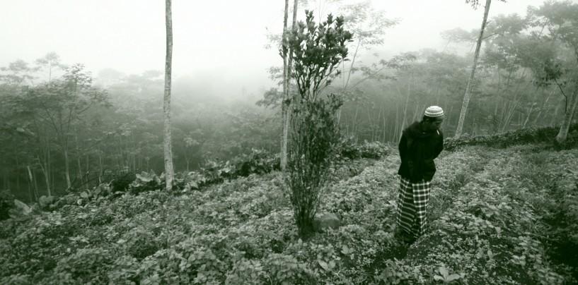 Horor di Takokak (1): Kesaksian Seorang Prajurit Siliwangi